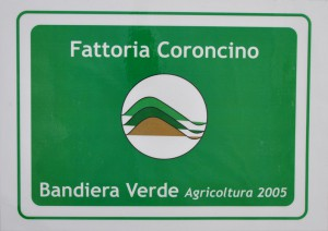 Bandiera verde 2005